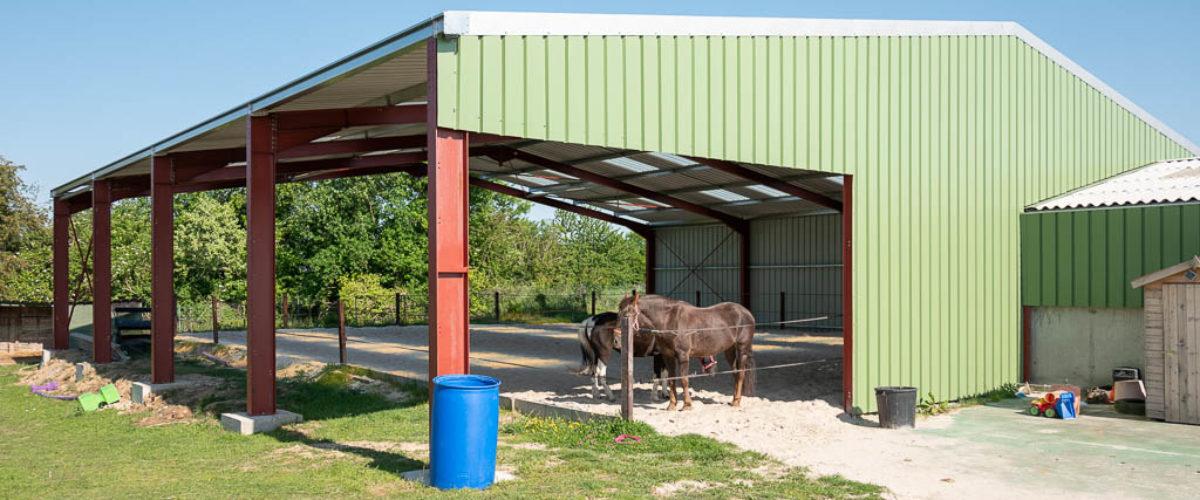 Création d'un manège au poney club