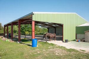 Manège chevaux du Shet d'Arlange poney club